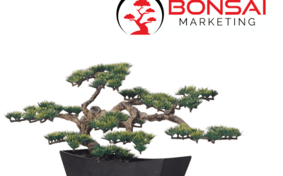 Why Use Bonsai Marketing For All Your Internet Marketing Needs